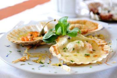 hrana; ribe; školjke